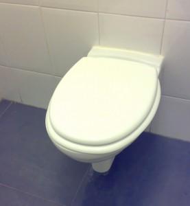 toilet idee n hangend toilet wonen