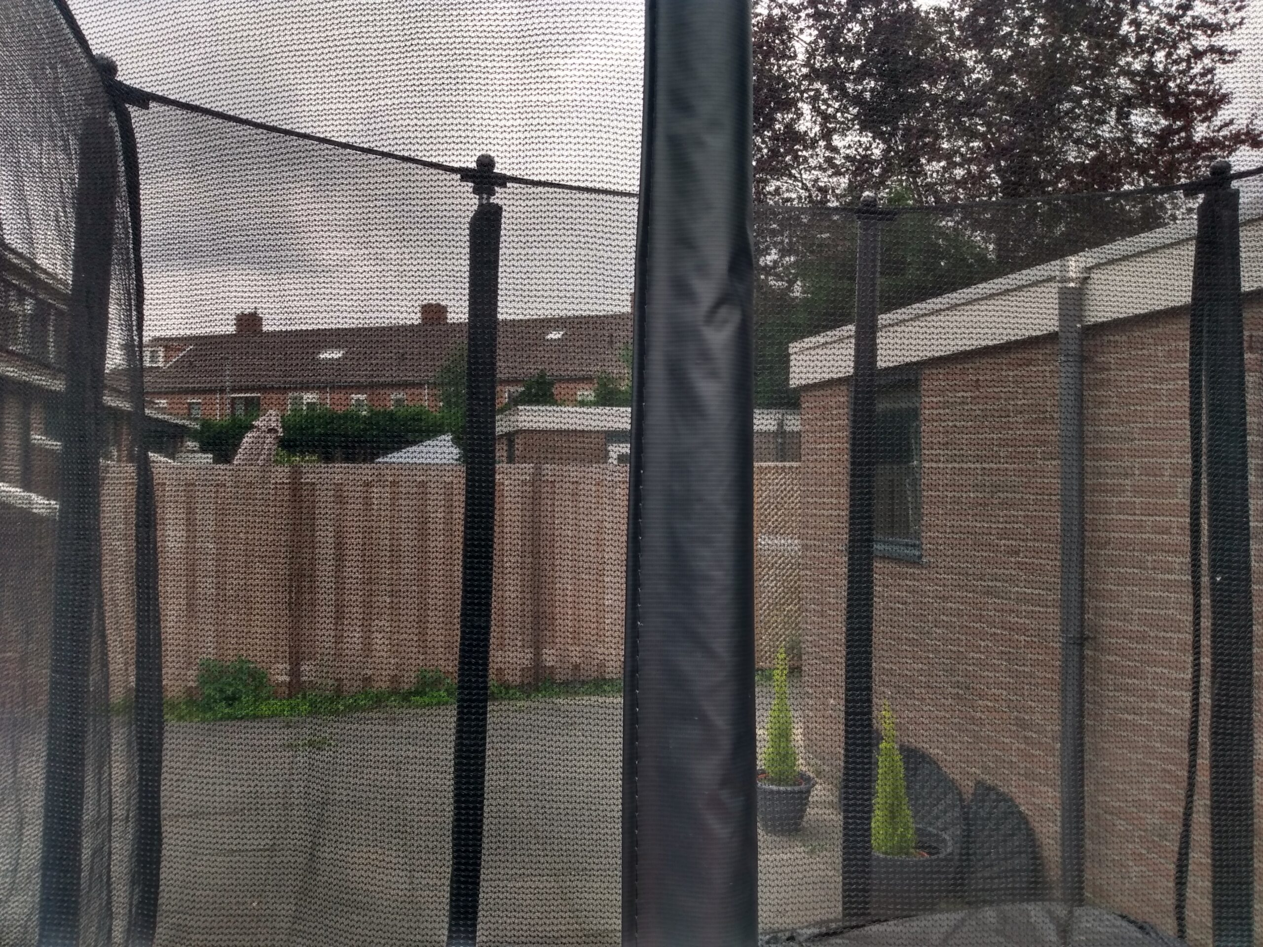 Trampolines kom je in vrijwel iedere achtertuin tegen. Maar welke kies je? Foto: S.v.d. Ent